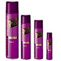 Goldwell - Sprühgold Friseur Haarspray 600 ml